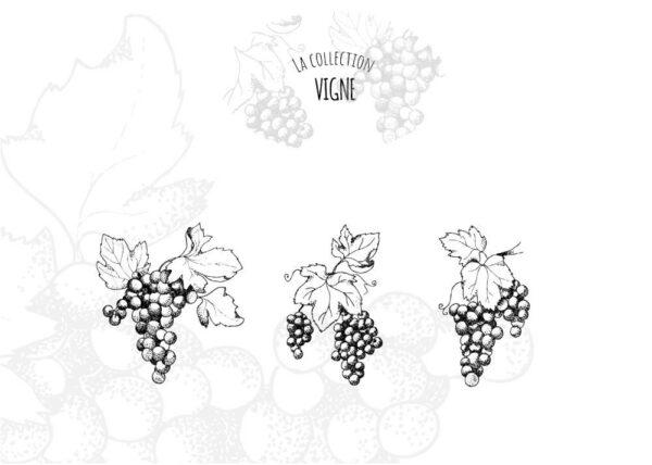 verre thème vigne